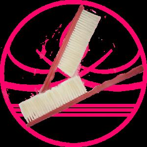 Cepillo para Apicultura